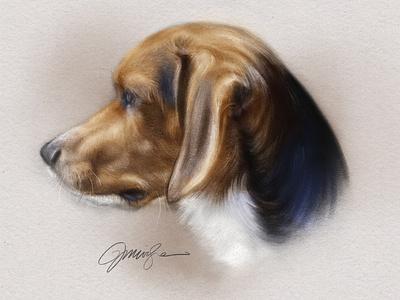 Beagle Portrait procreate profile portrait pets dog beagle
