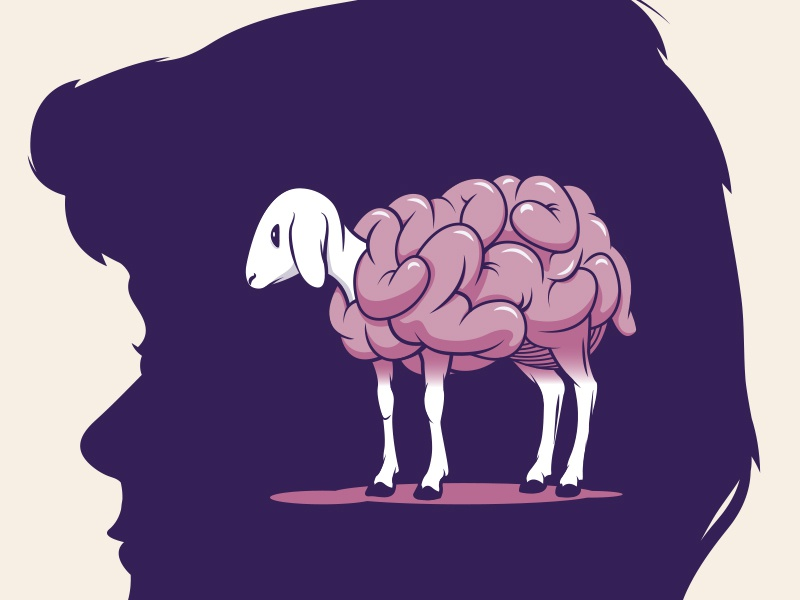 Sheep for Brains adobe illustrator vector person profile lamb sheep silhouette brains