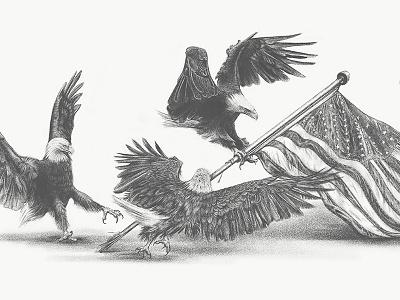 Plethora Patriot art talons torn feathers adobe sketch america flag eagle