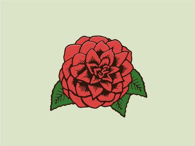 Camellia - Alabama State Flower illustrator floral illustration flower camellia alabama