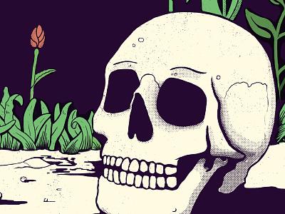 Another skull vanitas momento mori dead garden flower illustration skull