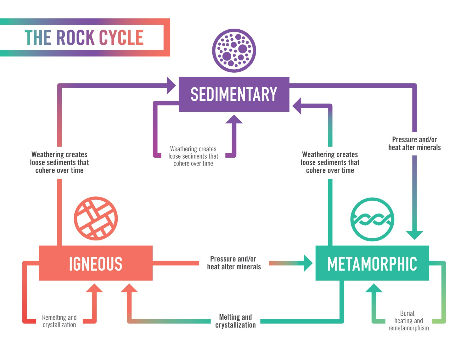 The Rock Cycle Diagram By Chris Gajus On Dribbble
