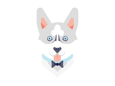 Grayson the Husky Pup
