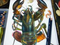 Lobster in watercolor