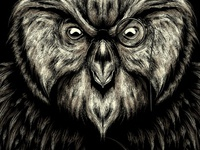 Wisest Owl Detail