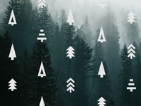 Geometric Evergreens