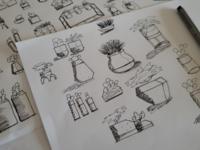 Plant Holder Designs