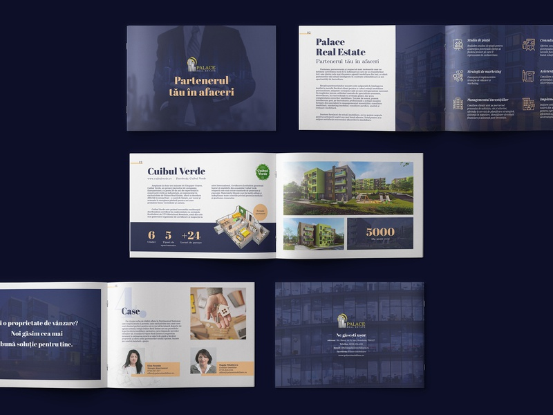 Palace Real Estate - Company Brochure - shot 2