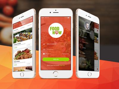 Food Now Mobile App Design