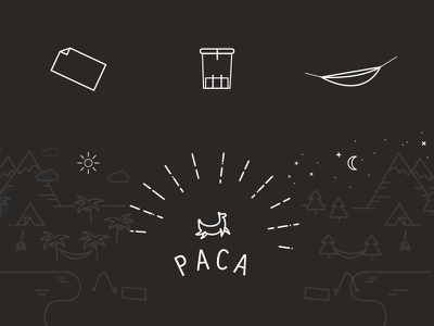 Paca Logo + Illustration clothing illustration branding logo