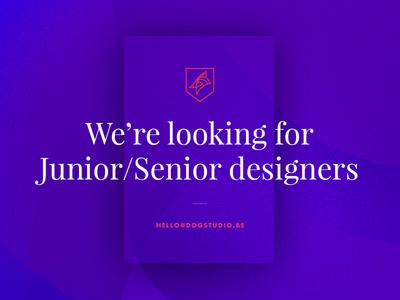 We're hiring designers jobs job belgium junior senior designer director art digital dogstudio hiring