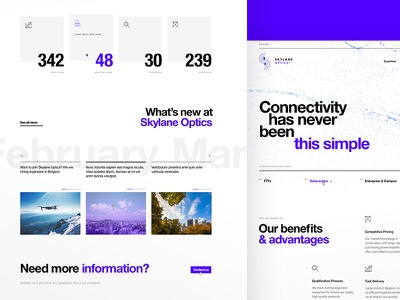 Skylane Optics - Homepage dogstudio product simple scroll fonts white black creativity layout webdesign
