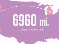 Mii travel stats