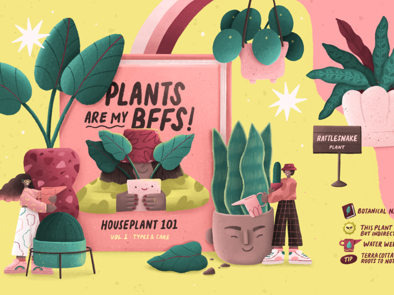 PLANT GUIDE plant care editorial illustration editorial illustration plant plant illustration