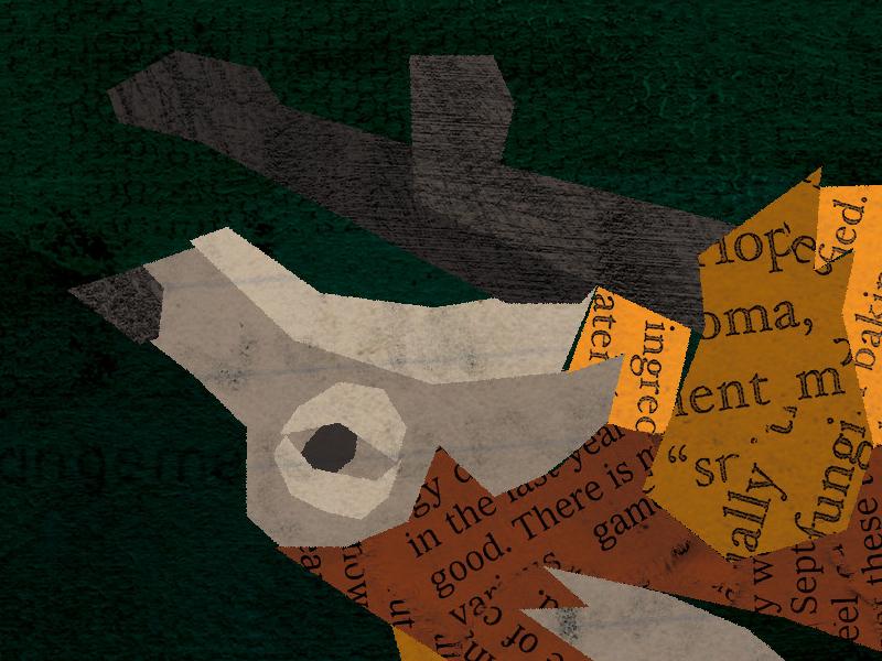 a fox [upside down] animal album art texture nature fox illustration