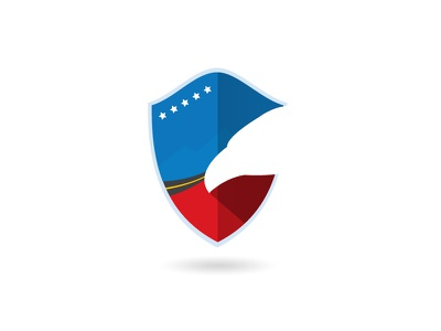 Auto Insurance Logo logo branding logo design insurance graphic design
