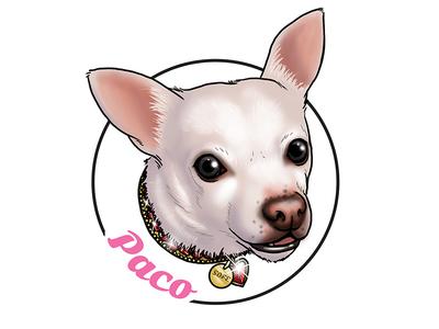 Paco Sticker