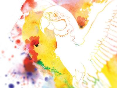 Margaritaville Shirt margaritaville shirt apparel design graphic illustration art drawing print