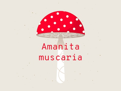 Don't Eat Me poster flat plant typography autumn forest illustration nature texture mushroom