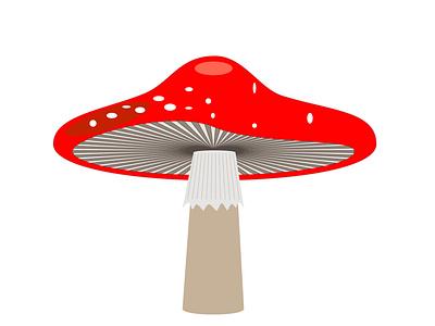 Mushroom Update! digital arts adobe illustrator drawing mushrooms digital art illustration