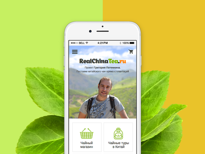 Mobile version of website RCT ecommerce mobile design web