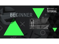 Tutorial: Beginner