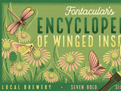 Fontacular | Fairytale Field Guide insect vintage retro bugs identification field guide fairytale encyclopedia dragonfly moth butterfly