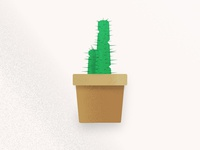 Texture Study (Cactus)