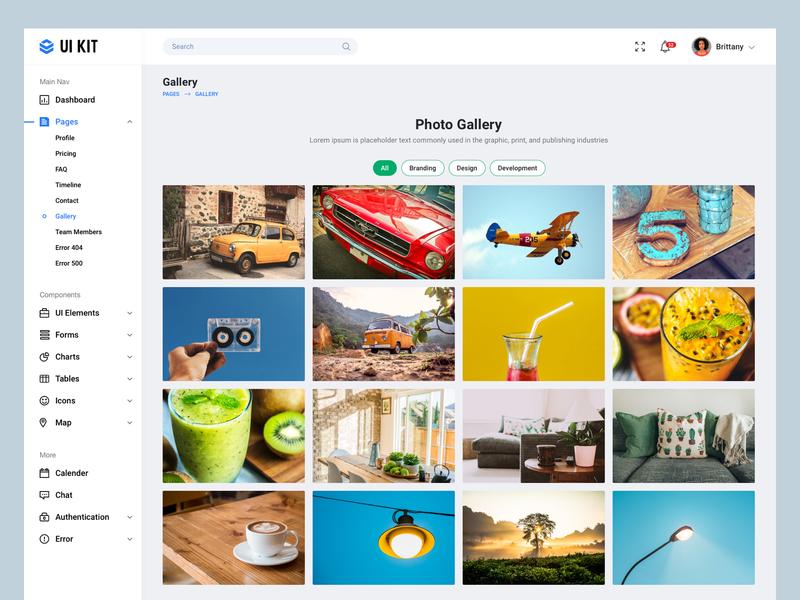 Gallery UI design app web minimal ux design ui bala ux dashboard app dashboard design dashboard gallery photo gallery gallery dashboard ui