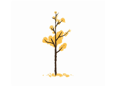 Floaty leaf procreate illustrator illustration animation 2d frame by frame animation
