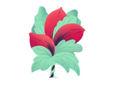 Bouquet apple pencil ipad procreate texture digital illustration creative design inspiration art illustration digital flower plant color drawing design illustrator illustration