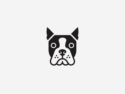 Boston Terrier boston terrier symbol pet illustration logo head face dog animal
