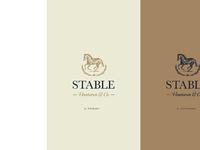 Stable ventures brandguide 05