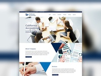 Accounting Firm theme website design