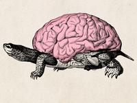Slow Thinking