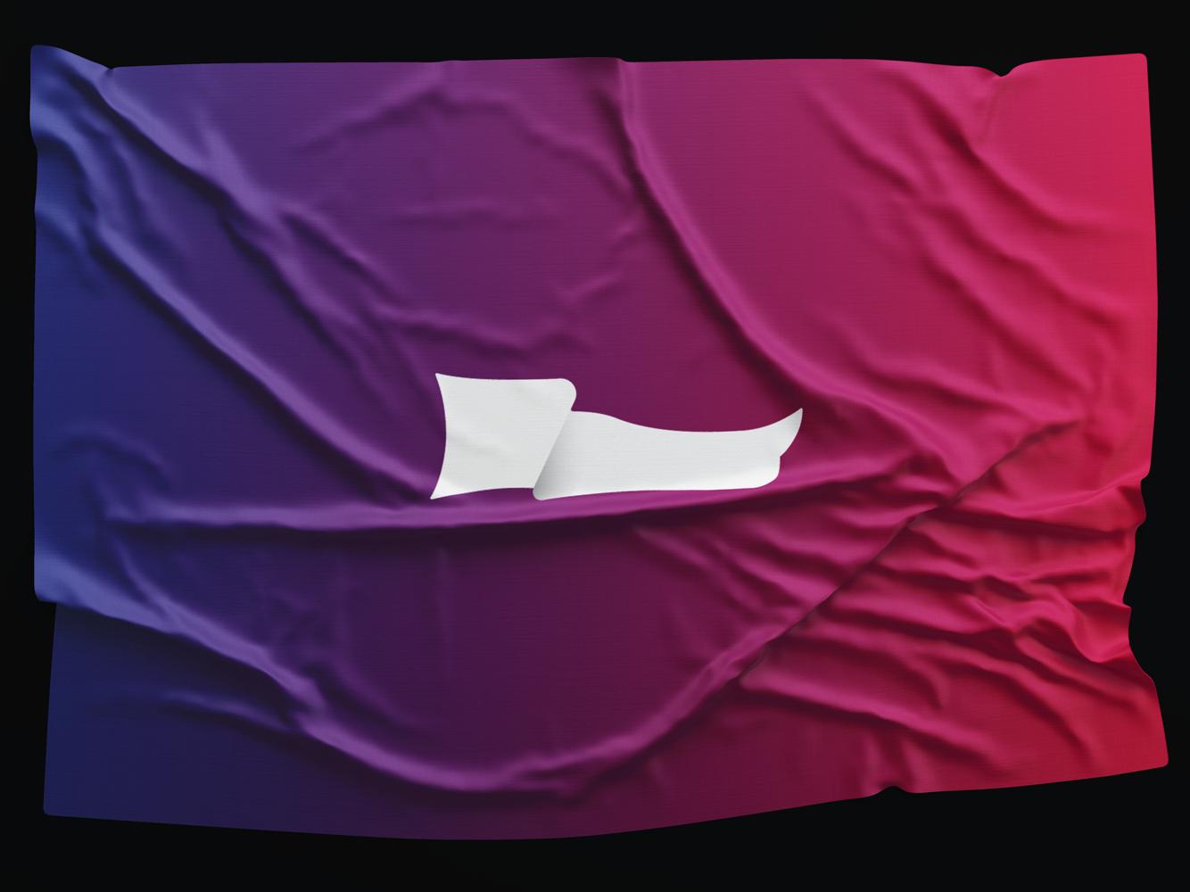 Flag flag logo flag flags brand identity branding logo design logo graphic design