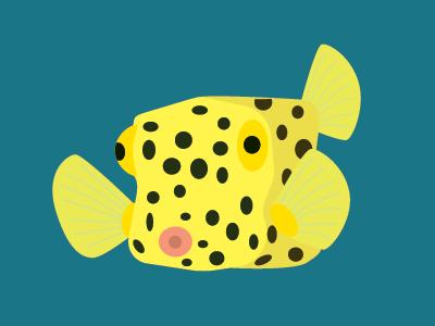 Box Fish water sea ocean fish box fish gillustrations gillustration