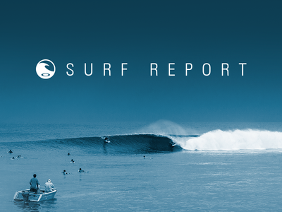 Surf Report Logo/Website