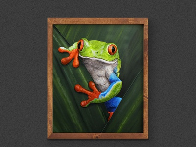 Red-Eyed Tree Frog / Acrylic Painting