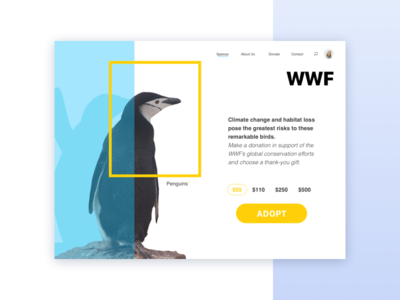 World Wildlife Fund concept e-commerce donate planet protection ecology flat card charity penguin animal winter ui