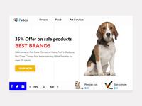 Pet web slider