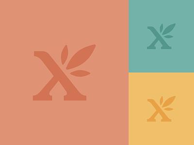 Españolx Logo   Concept spark petal flower flourish spanish español burst bloom x monogram mark logomark logo identity branding