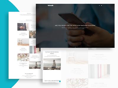 Web Design Study to Biznode logo design logo branding web design