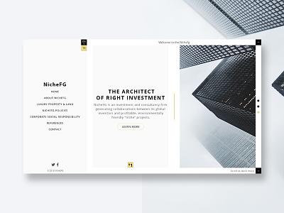 Web design study for Nichefg web design web
