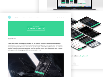 New website - Case study layout