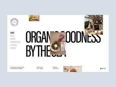 Babylon Beach Bar ui portfolio design interface branding logo graphic design web