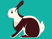 Seagull / Rabbit