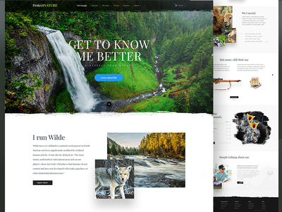 Get to know the Nature logo menu footer sounds reviews testimonials pictures webdesign design clean page landing