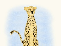 Cheetah 3000x3000