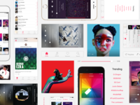 Apple Music Redesign (Final)